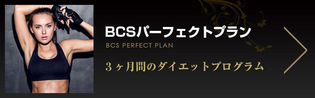 BCSパーフェクトプラン